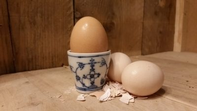 Blau Saks Winterling eierdoppen, eierdopjes